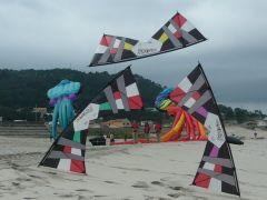 team ( Moledo) Portugal