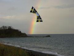 goldi_rainbow.jpg