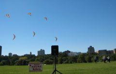 Time Warner Kite Festival - Milwaukee WI Lakefront