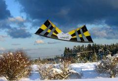 snow_fly1.jpg