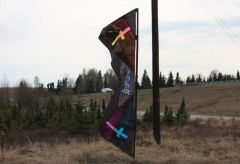 Our Kites