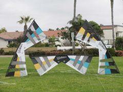 New 2011 Team Kites - TMF