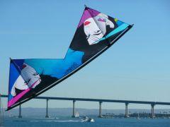 Nagels On San Diego Bay.jpg