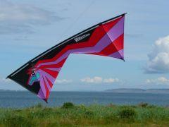 Stallion Masterpiece on Marowstone Island Washington.jpg