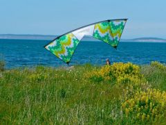 Flying At Fort Flagler On Marrowstone Island