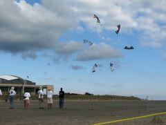 Team Flying spin 10/1/11 at AKA Wildwood